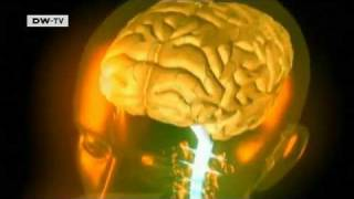 Nobel hopeful - neurological research that could change the world   Tomorrow Today