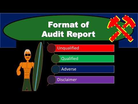 Format Of Audit Report