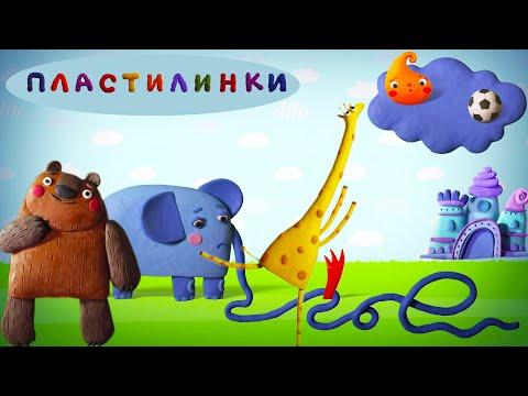 Пластилинки - Кто больше всех? 🦁🐦🐍 Все мультики подряд 🎨 Музыкальные мультфильмы | Мультики - Видео онлайн