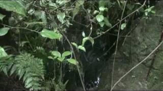 Las Cuevas de Carrasquero - Carache