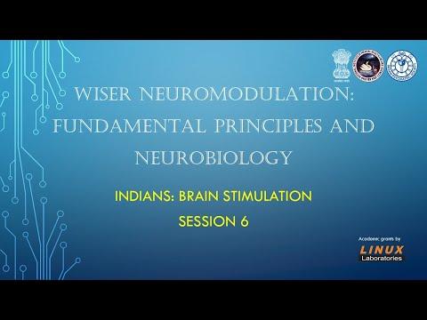 INDIANS - Brain Stimulation. Session 6. WISER - Principles. 01 02 2020