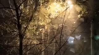 Вьюга в Ростове 15.11.2018 Ростов-на-Дону Главный