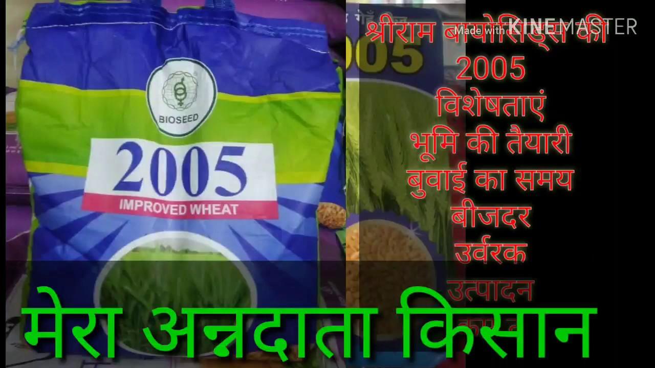 Download Ad:- improved wheat 2005 - shriram bioseeds genetics|| गेहू की उन्नत खेती श्रीराम बियोसिड्स 2005