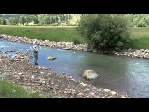 Fly Fishing on the North Fork of the South Platte River in Colorado