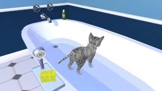 Petz Catz 2 Gameplay :D
