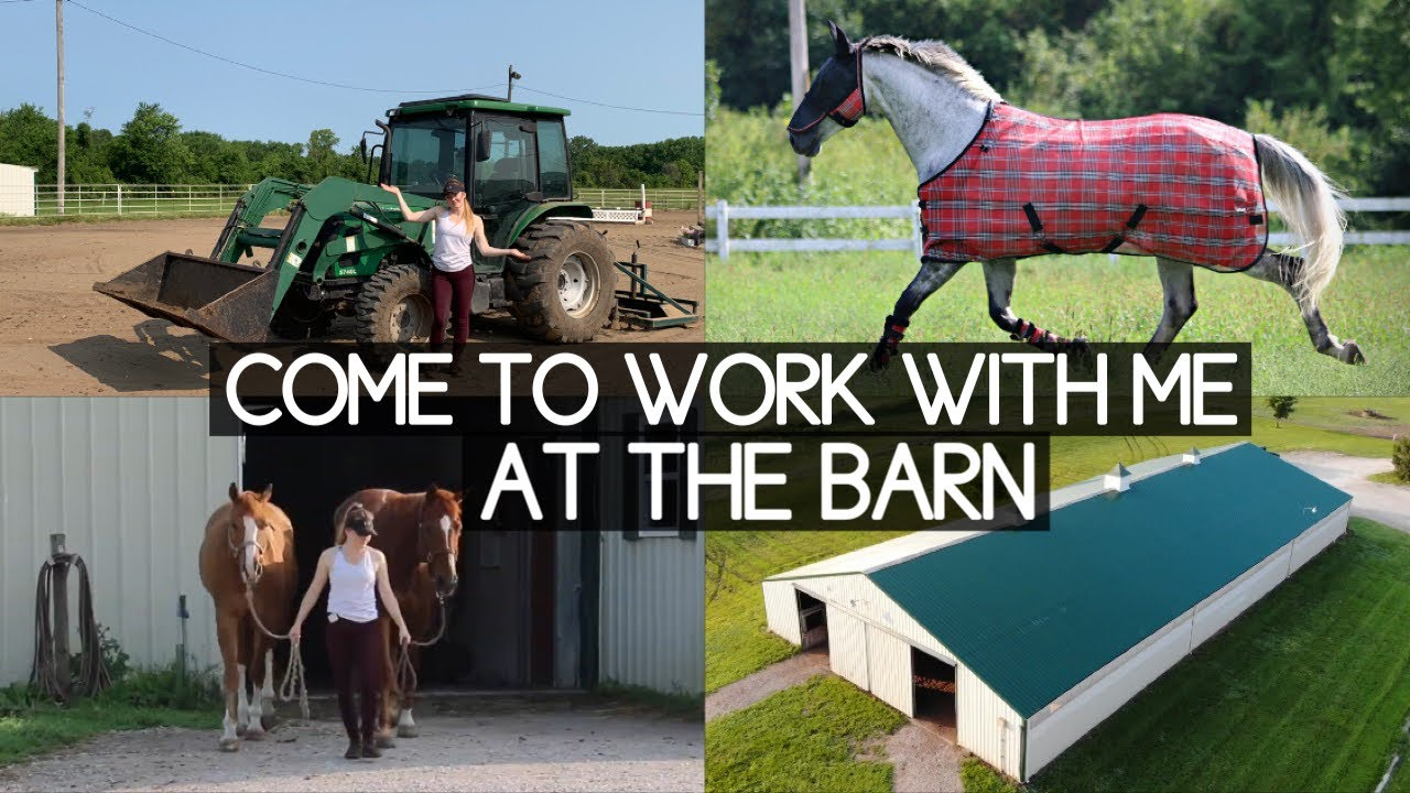 My Morning Barn Routine // barn chores vlog
