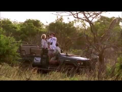 South Africa | Wildlife | World Travel Studio