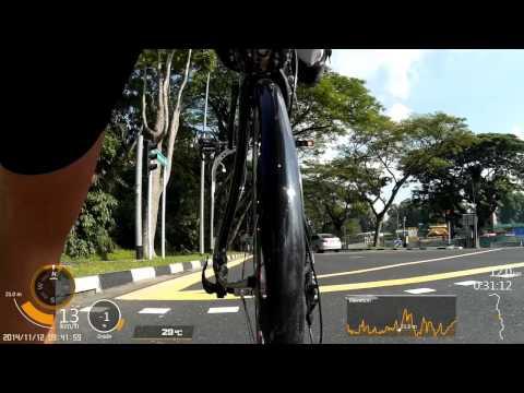 Cruzbike Silvio 2 - Singapore - Ride to Work
