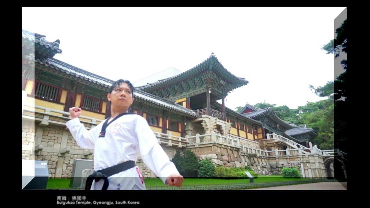 08 太極八章 太极八章 Taegeuk 8 Jang 跆拳道品勢