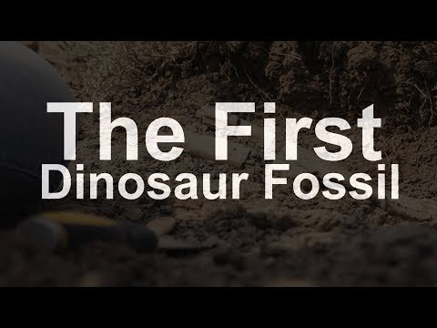 Where Was The First Dinosaur Fossil Discovered in Canada?