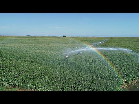 Nebraska Farm For Sale | Northeast Perkins County Pivots AUCTION | Paxton, NE