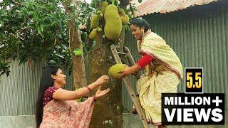কাঁচা কাঁঠালের অসাধারণ গ্রামীণ রান্না   Traditional Village Cooking with Raw Jackfruit