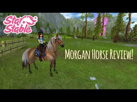 Morgan Horse Review! // Star Stable Online