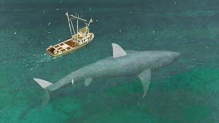 El Tiburón Más Grande Del Planeta