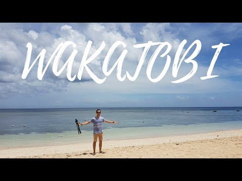 WAKATOBI From Jakarta to Nua Shark Point