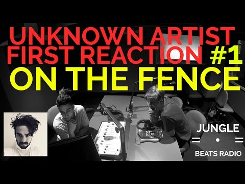 UNKNOWN ARTIST FIRST REACTION/REVIEW #1 - ON THE FENCE (JORDY DINGS)