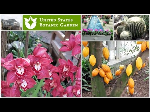 UNITED STATES BOTANIC GARDEN, WASHINGTON DC || Tour of Beautiful Garden & More