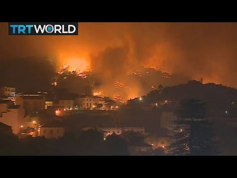 Europe Wildfires: Portugal battles fires as heatwave continues