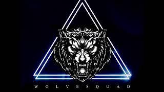 Gambar cover Dav Dralleon - W O L V E S Q U A D