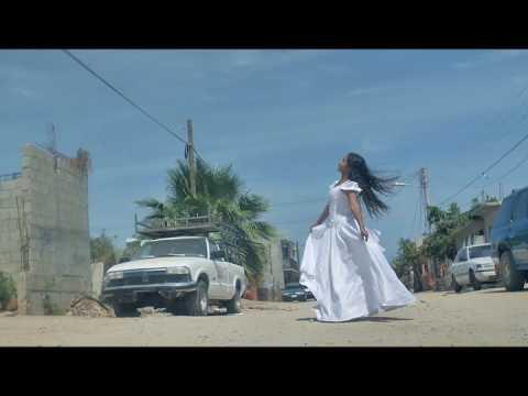 Chip Taylor - Senorita Falling Down