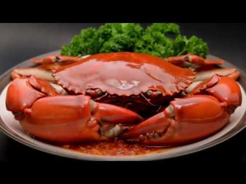 singapore-food-guide---rayna-tours-&-travels