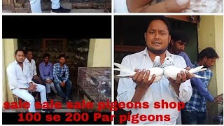 Sales pigeons in the shop very low cost. 100 to 200 Par pigeons,