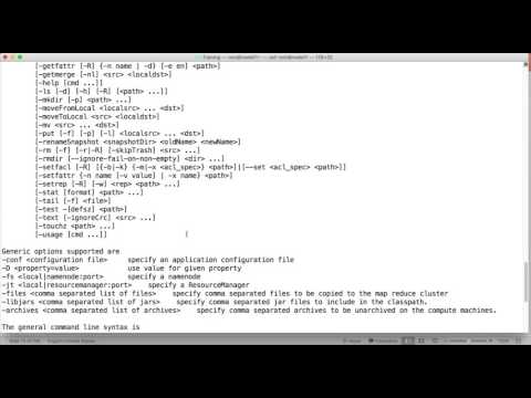 HDFS Commands - hadoop fs command overview, help and appendToFile