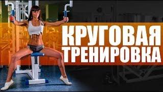 Упражнения для девушек. Круговая тренировка