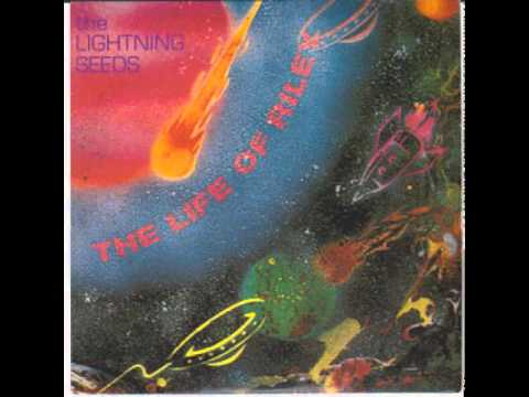 The Lightning Seeds - The Life Of Riley (Instrumental)
