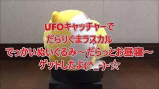 UFOキャッチャーでだらりぐまラスカル でっかいぬいぐるみ~だらっとお昼寝~をゲットしたよ(^_-)-☆ thumbnail