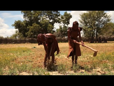 Дикие племена Африки. Химба и пигмеи