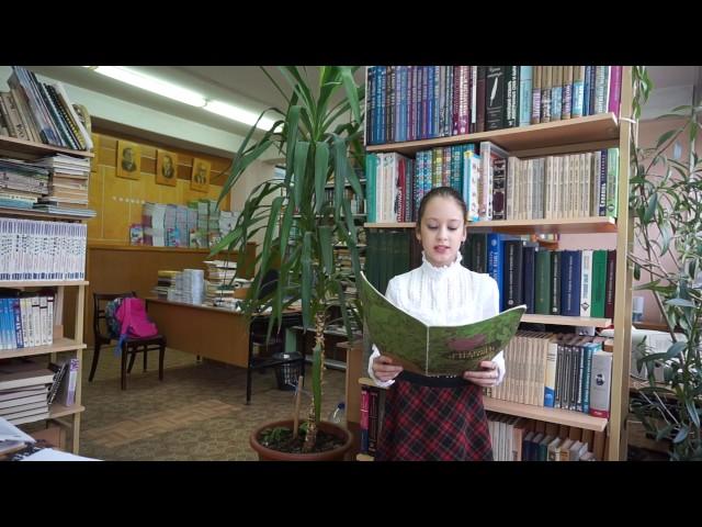 Изображение предпросмотра прочтения – ОльгаГлинкова читает произведение «Слон и Моська» И.А.Крылова