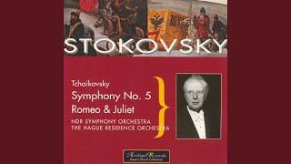 Symphony No. 5 In E Minor: I. Andante - Allegro con Anima
