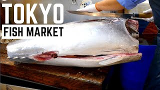 Fish Market Tokyo | Best Tuna and Seafood Market Japan