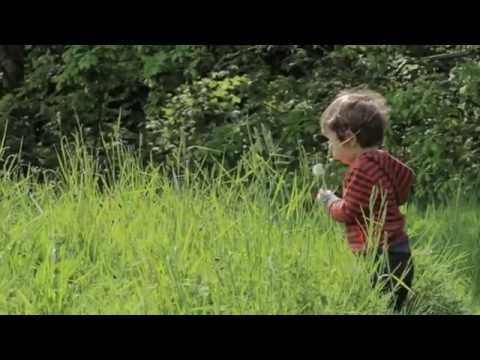 Nature Play:  Nature Conservation