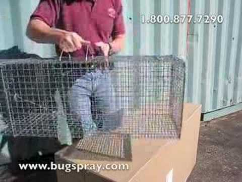 Live Trap 11 by 12 Sliding Door Setup