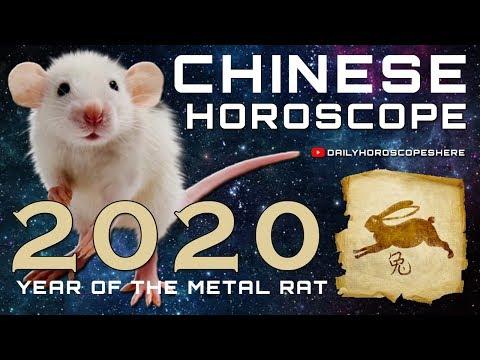rabbit-2020-chinese-horoscope---chinese-zodiac-2020