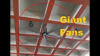 Unique Giant Ceiling Fans