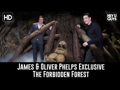James & Oliver Phelps Exclusive   Forbidden Forest Reveal & Harry Potter Studio Tour