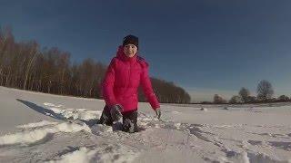Снежные псы 2015 \snow dogs 2015
