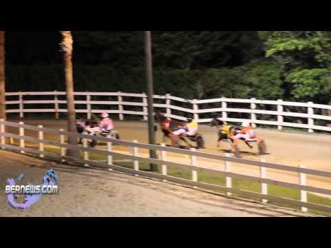 Harness Pony Racing #2 - Nov 26