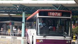 [SBS Transit][Volvo B10M][Walter Alexander Strider] SBS2602B on 107M