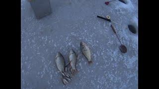 Красивая зимняя рыбалка Зимний Карась