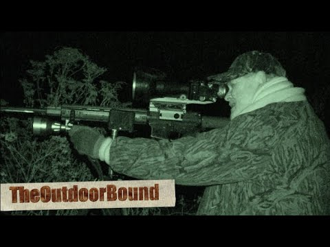 Night Vision Coyote Hunt