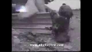 Адыгские добровольцы-наемники стреляют в сторону Сухуми. Абхазская война 1992-93.