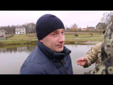 Ліквідація огорожі ставка в селі Коти Яворівського р-н. 12-11-16