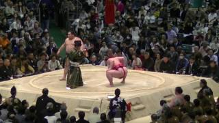 平成29年春場所14日目取組結果一覧 (外部サイト:Sumo Reference) htt...