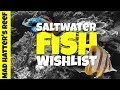 Top 10 Saltwater Fish Wishlist for my Reef Tank