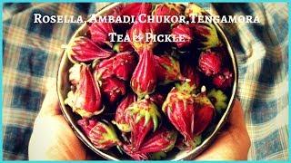 Rosella, Ambadi, Chukor, Tengamora | How to make Rosella herbal tea & pickle/jam