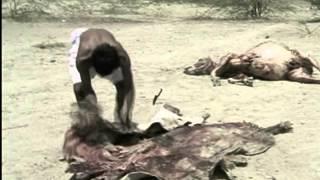 La India Salvaje, El reino del desierto - BBC